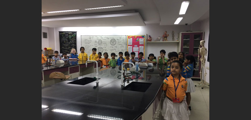 the images show the well equipped chemistry lab,school with well equipped science labs