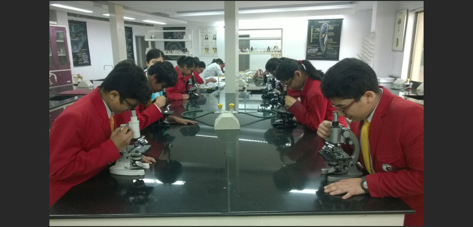 school with well equipped science labs,students are doing practical with the help of microscope